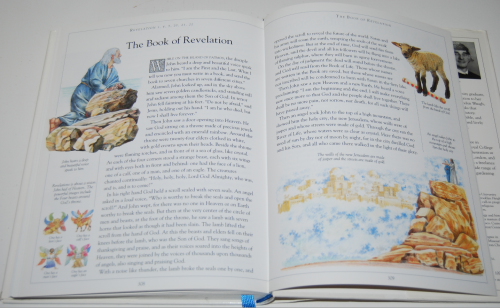 The children's illustrated bible 12