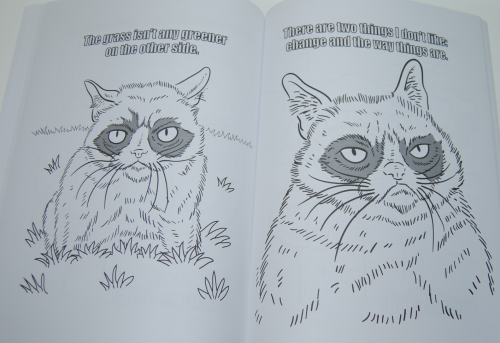 Grumpy cat coloring book 6