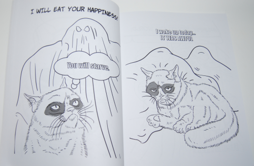 Grumpy cat coloring book 2