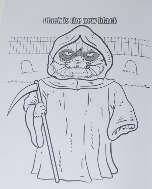 Grumpy cat coloring book 7