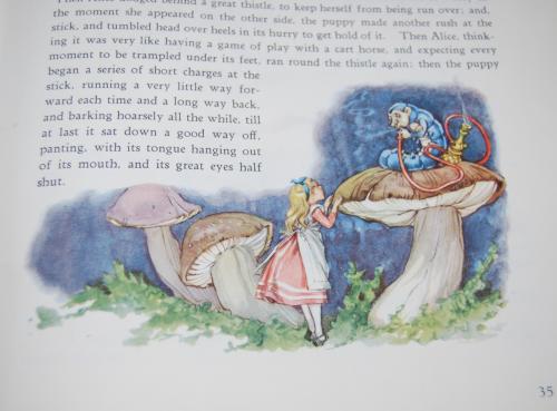 Alice by maraja 2