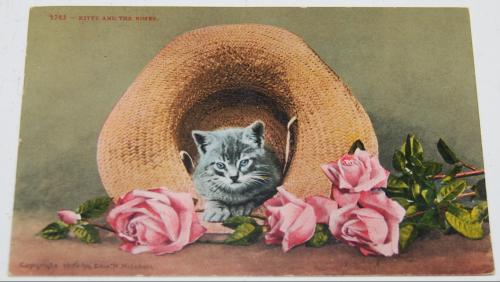 Vintage postcards kitty