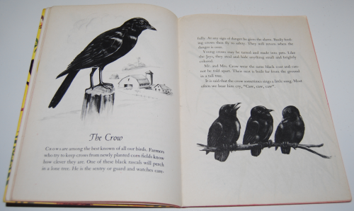 A child's book of birds 5