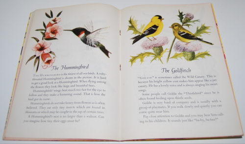 A child's book of birds 6