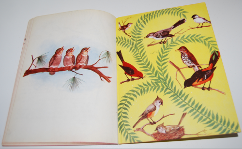 A child's book of birds 9