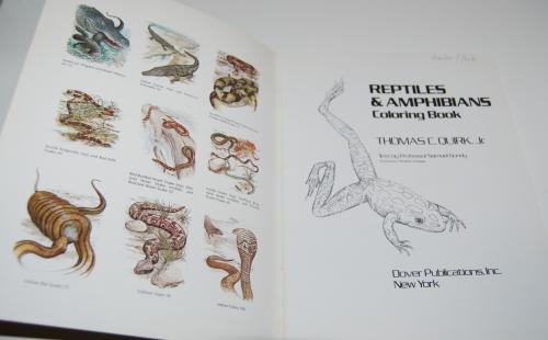 Dover reptiles amphibians 1