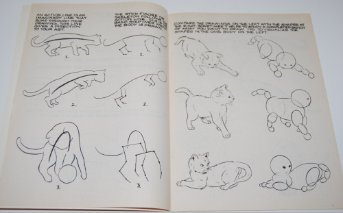 How to draw cats & kittens scholastic book 2