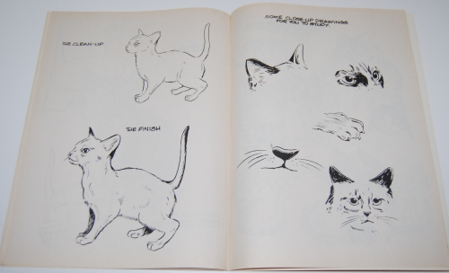 How to draw cats & kittens scholastic book 5