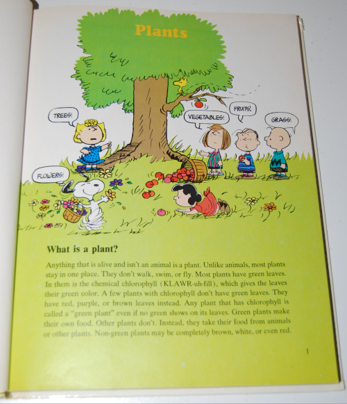 Charlie brown's second super question & answer book 3