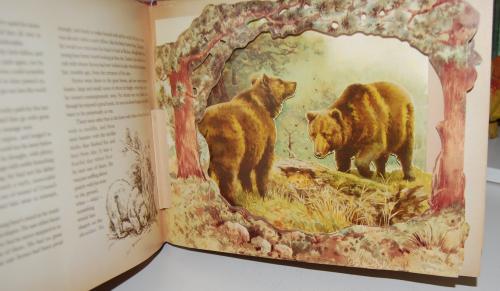 Wild animal stories 2