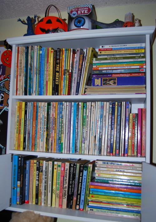 Scholastic bookshelf 2