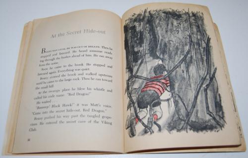 Enemies of the secret hideout scholastic book 5