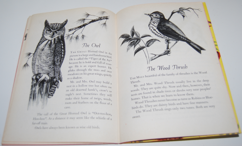 A child's book of birds 8