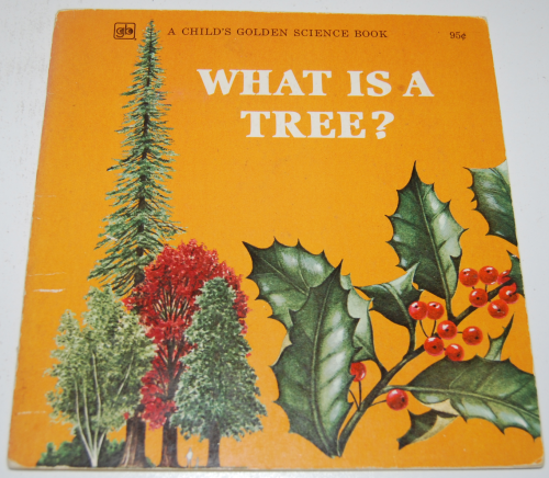 What is a tree