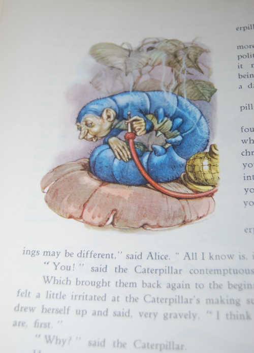 Alice by maraja 3