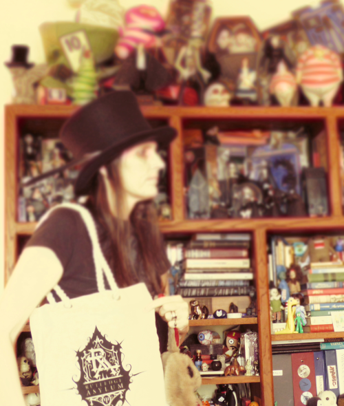 Bren alice asylum bag