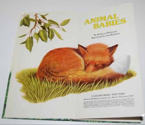 Animal babies 1