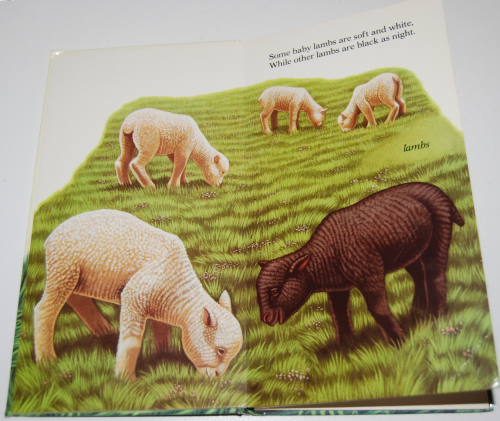 Animal babies 3