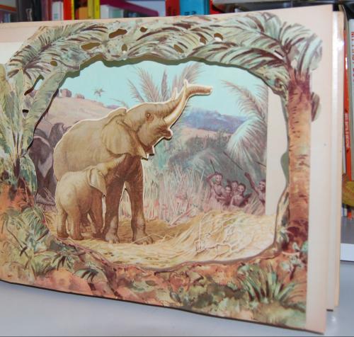 Wild animal stories 4