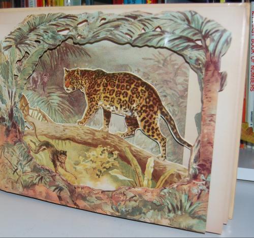 Wild animal stories 3