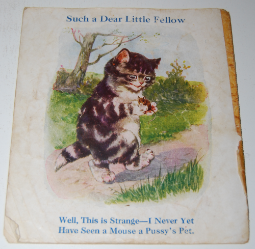 Vintage cat book pussies x