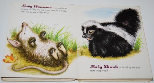 Little golden book baby animals 1952 4