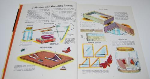 Golden book of crafts & hobbies 2