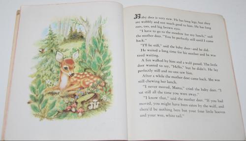 Animal babies little golden book 6