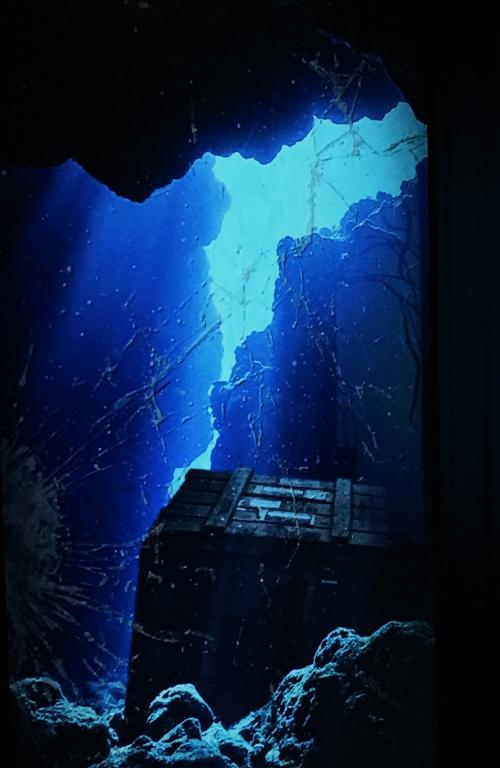 Spirit store aquarium 2