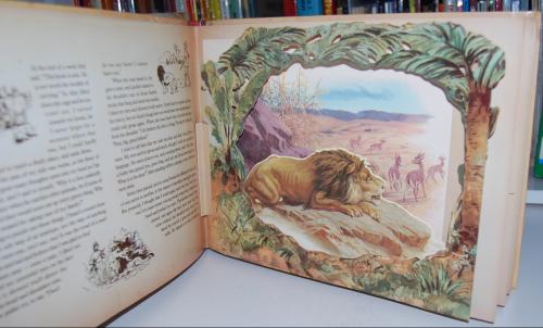 Wild animal stories 1