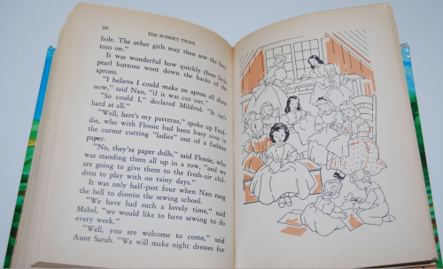 The bobbsey twins 7
