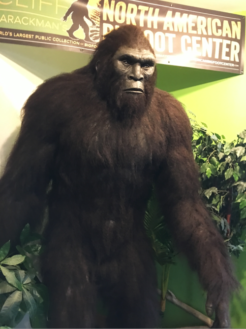 Bigfoot center 5
