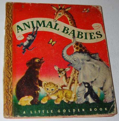 Animal babies little golden book