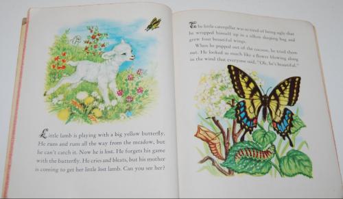 Animal babies little golden book 7