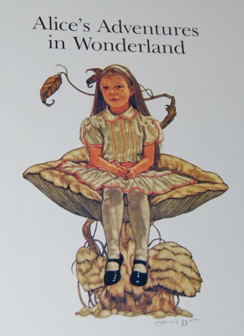 Alice's adventures x