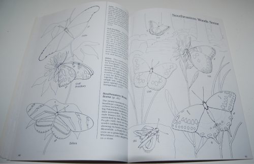 Peterson field guide coloring book butterflies 6