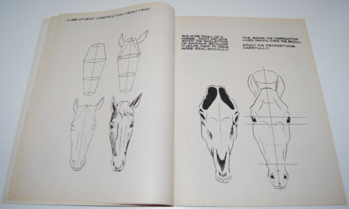 How to draw horses scholastic book 3