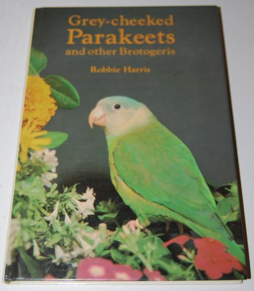 Grey cheeked parakeets