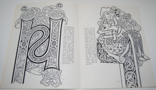 Ancient ireland coloring book 7