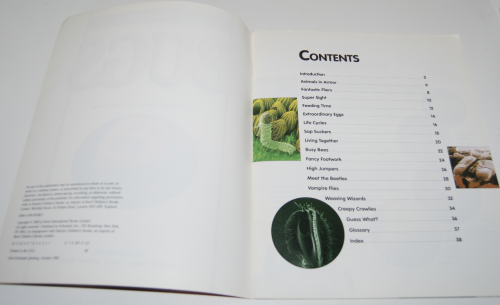 Bugs scholastic book 1