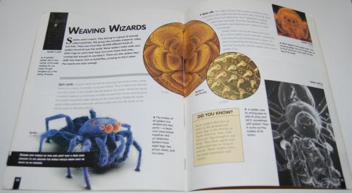 Bugs scholastic book 5