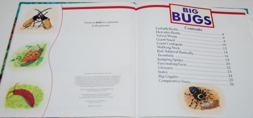 Big bugs book 1