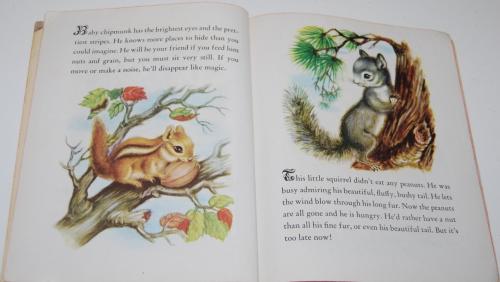 Animal babies little golden book 3