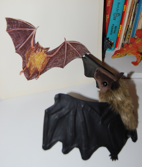 Folkmanis little brown bat puppet 4