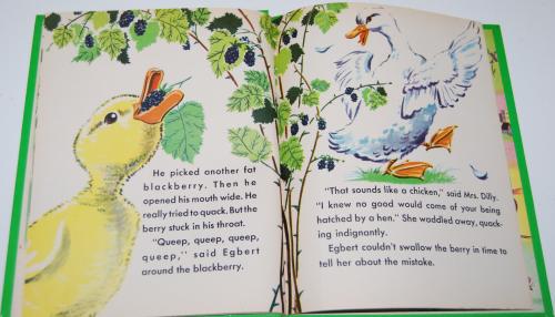 Little duck said quack wonder book 5