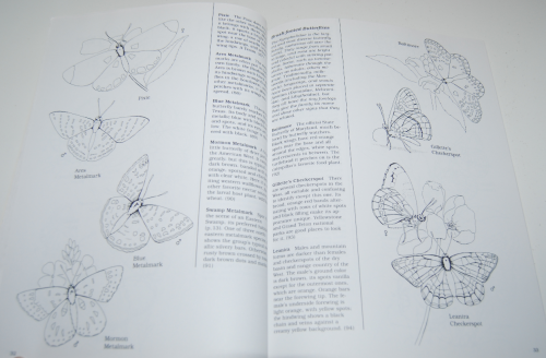 Peterson field guide coloring book butterflies 5