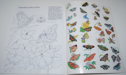 Peterson field guide coloring book butterflies 10