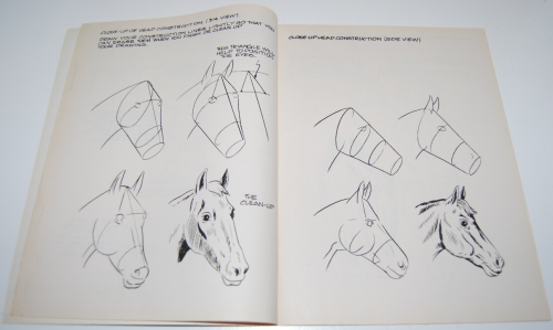 How to draw horses scholastic book 2