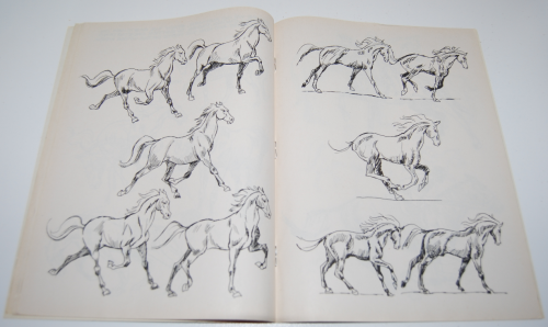 How to draw horses scholastic book 5