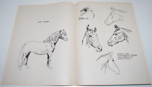 How to draw horses scholastic book 6